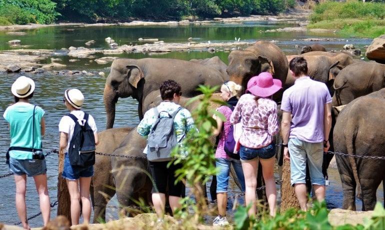 Tourists in Sri Lanka